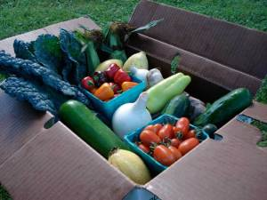 Box from Driftless Organics